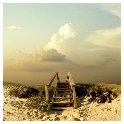 escalier-bois-sur-dune