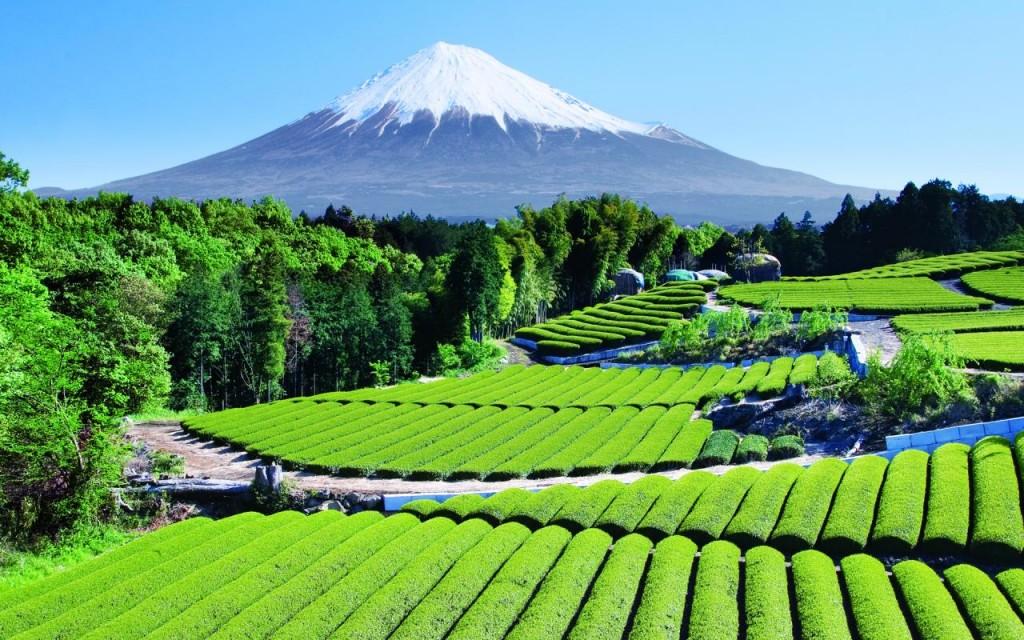 mont fudji au japon