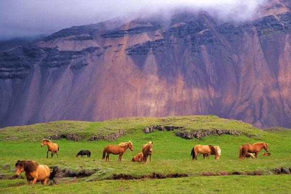 islande-paysages